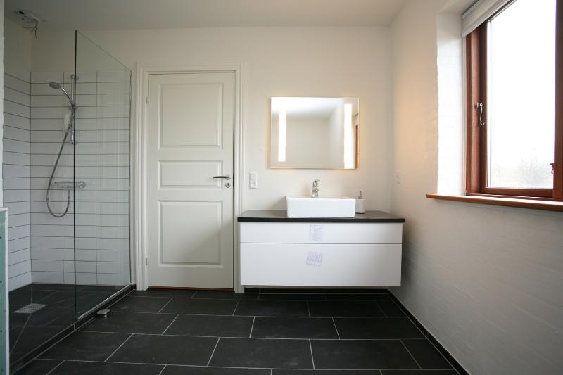 Ultra Skal i have nyt badeværelse - Eller skal det gamle renoveres? ZD44